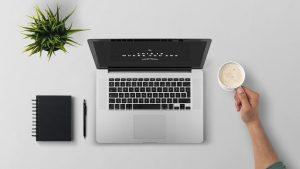 Cara Download Video Tiktok Di Laptop Yang Mudah